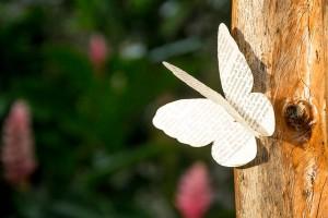 gedicht_vlinder